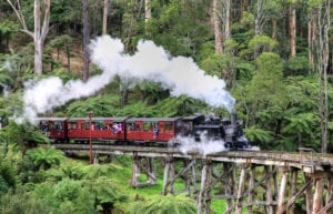 Puffing Billy: Melbourne day trip