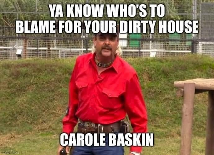 CAROLE BASKIN IS THE REASON YOUR HOUSE IS DIRTY