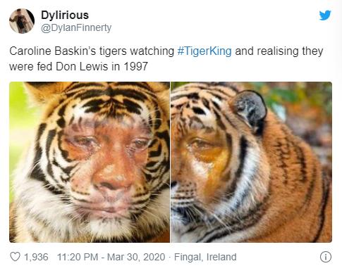 Carole Baskins Tigers