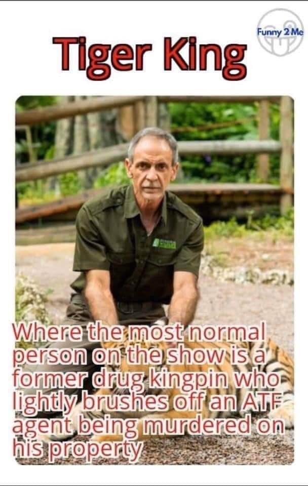 TIGER KING MOST NORMAL PERSON MEME