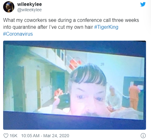 TIGER KING WORK CONFERENCE CALL