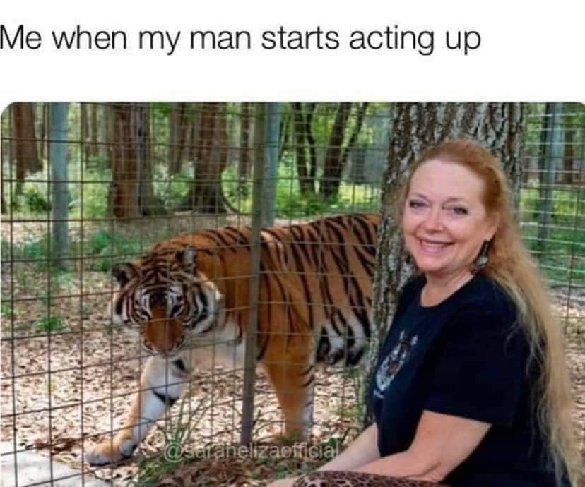 carole baskin meme when husband starts acting up tiger king