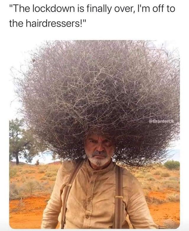 coronavirus hair cut meme reddit STerrier666