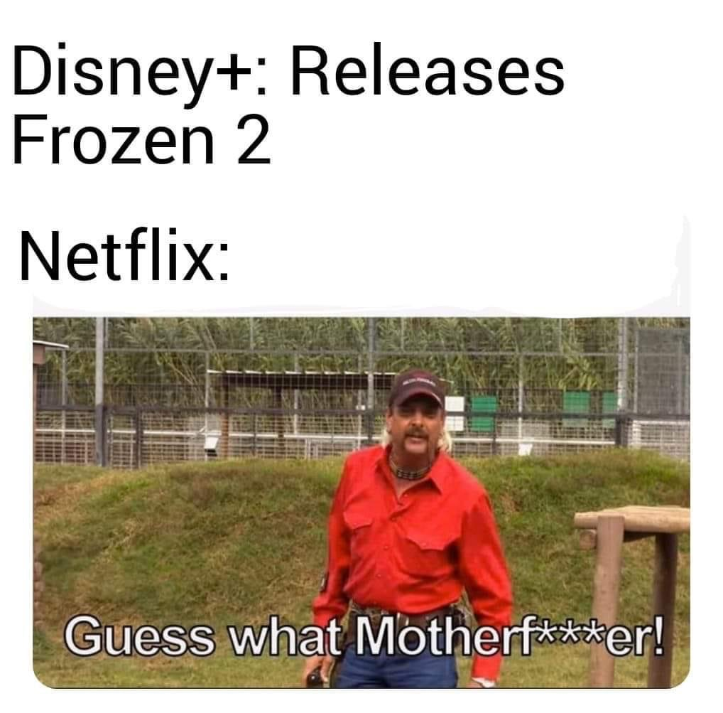 disney+ releases frozen 2 netflix tiger king