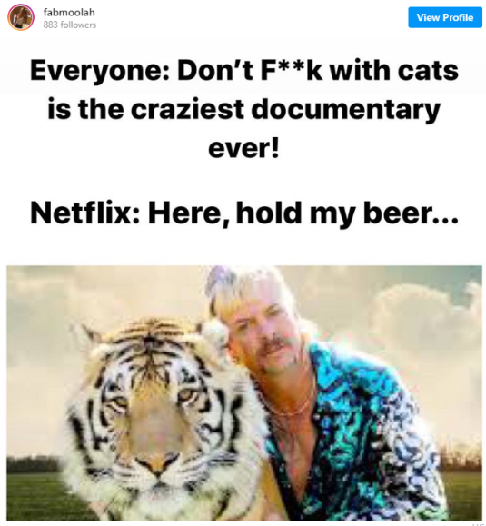 don't fuck with cats tiger king