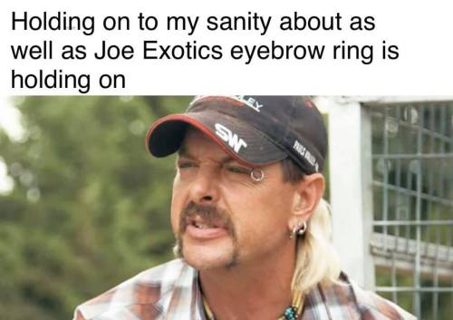 holding onto my sanity about as well as joe exotics eyebrow ring