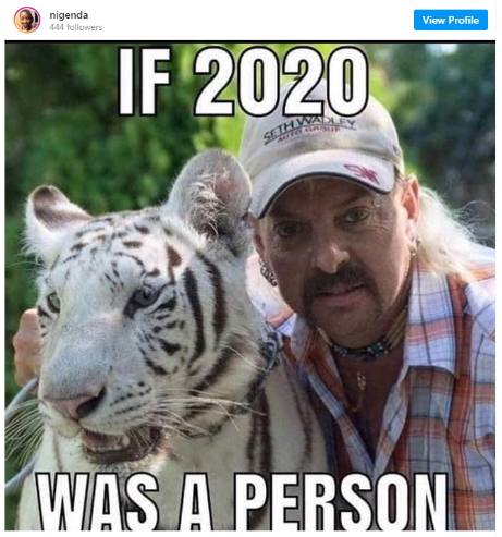 if 2020 was a person joe exotic