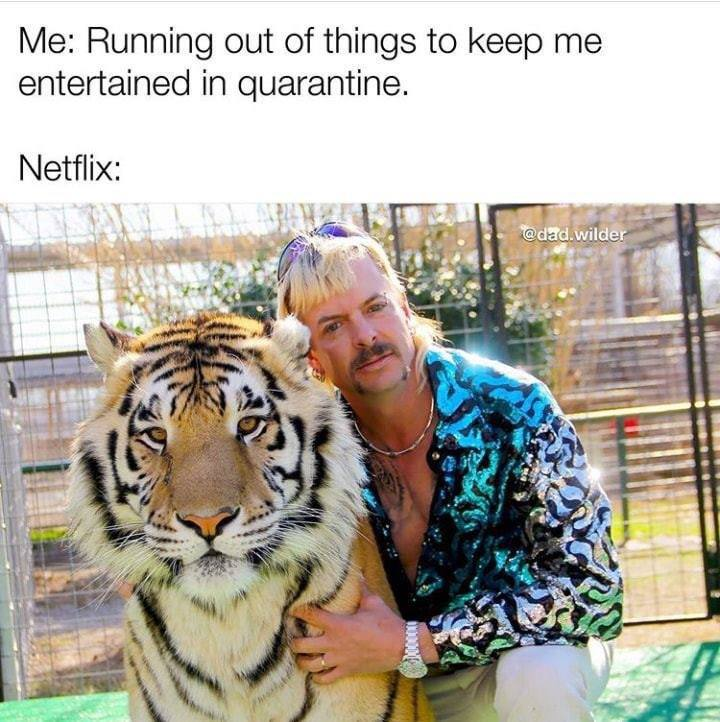 netlfix joe exotic tiger king