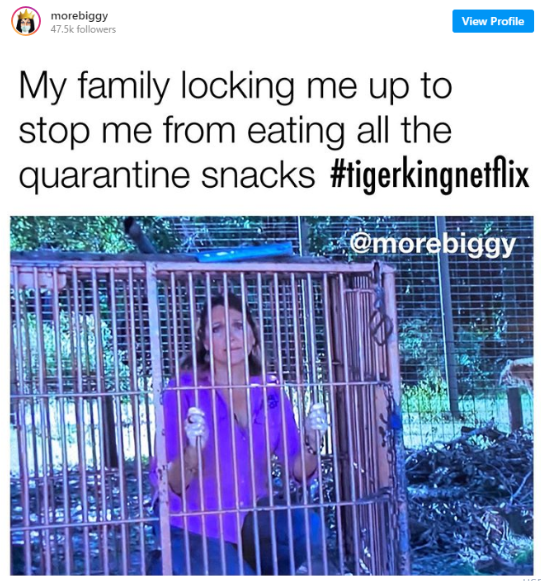 quarantine snacks meme