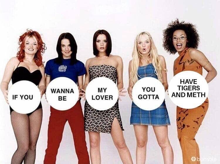 spice girls tiger king meth