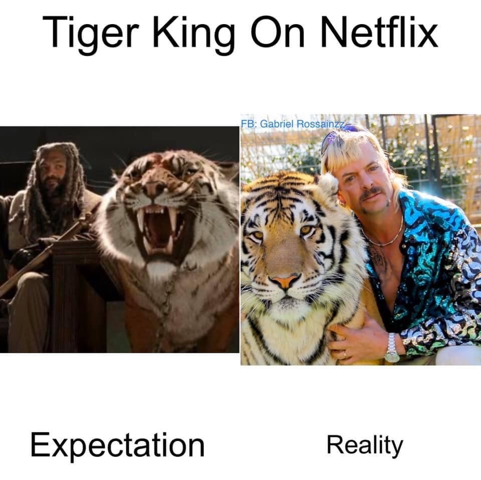 tiger king walking dead meme