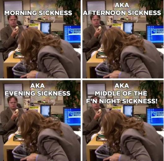 morning sickness all day sickness meme