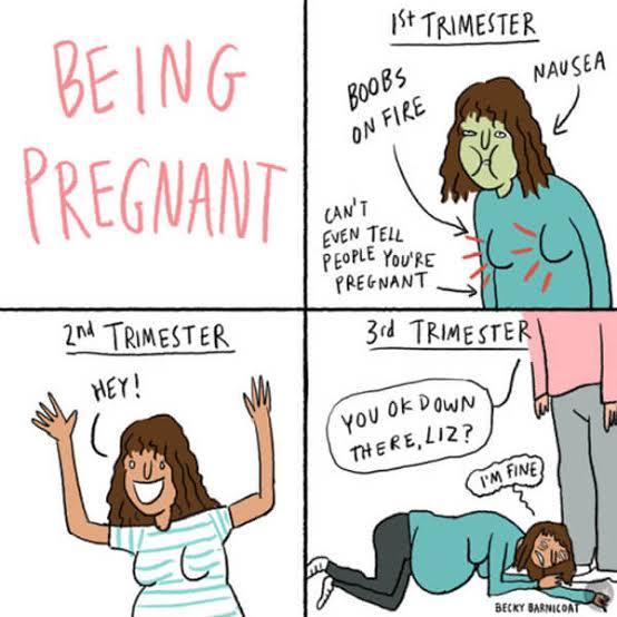 pregnancy 1st 2nd 3rd trimester meme