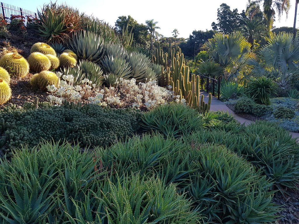 royal botanic gardens melbourne gate c